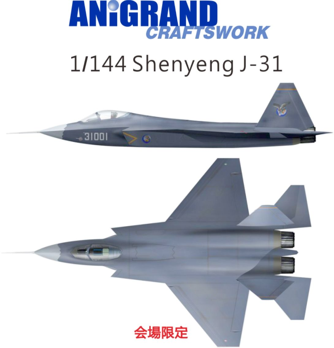 /Anigrand_Catalog/Anigrand/anigrand/dameya/1-144 Shenyang Flying Machine Industry Group J-31.jpg